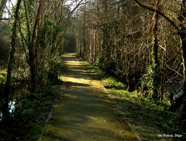 Coolaney river walk