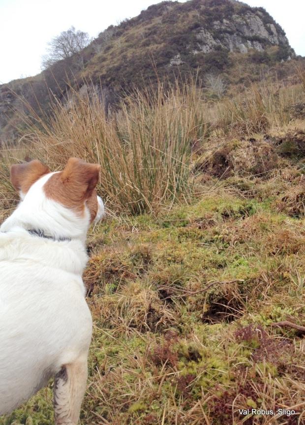 Mountain climbling