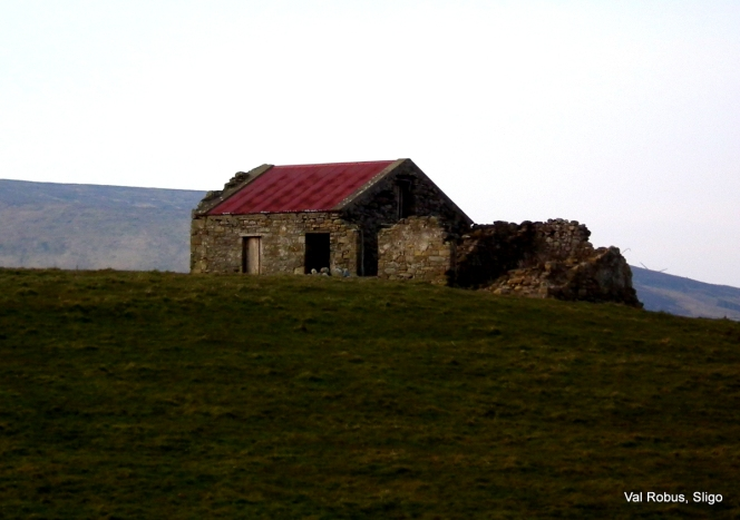 Derelict cottage
