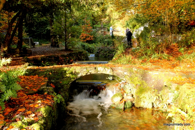 Autumn at the Holy Well