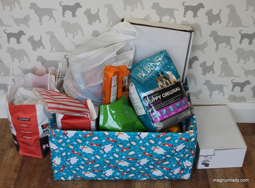 Animal Shoebox Appeal