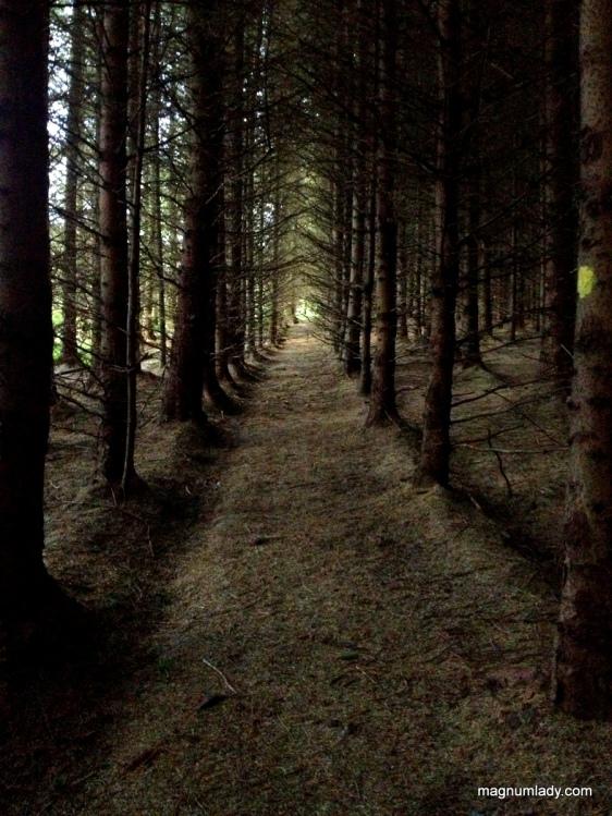 Labby Walk