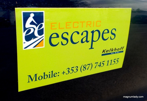 Electric Escapes