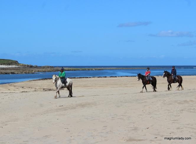 Trek on the beach