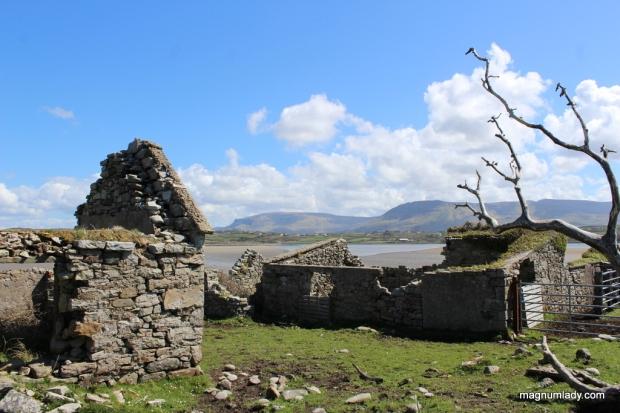 O'Connor's Island