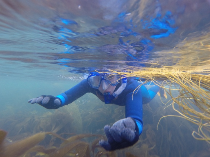 Lucy snorkelling