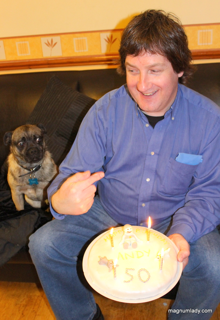 Puggly wants cake!