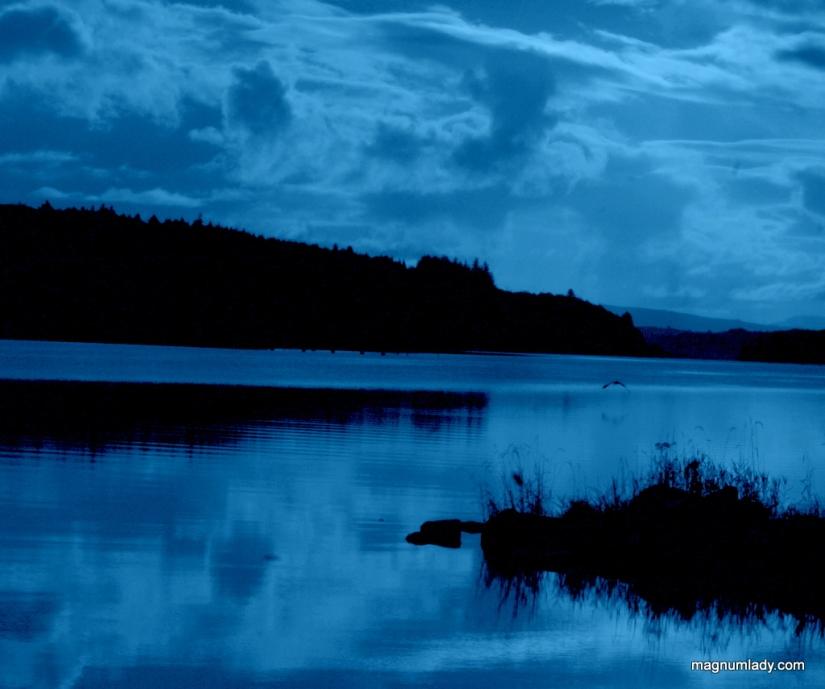 Blue but not feeling blue