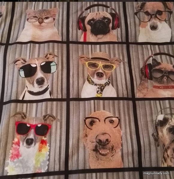 Dog Duvet