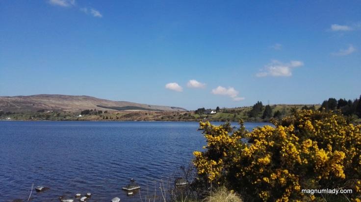 Lough Talt