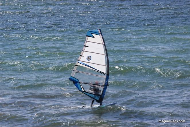 Strandhill windsurfer
