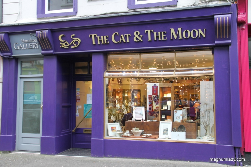 the-cat-and-the-moon