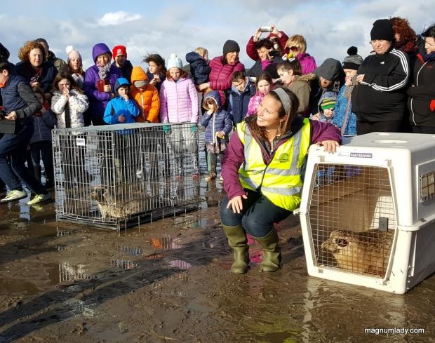 Releasing the seals