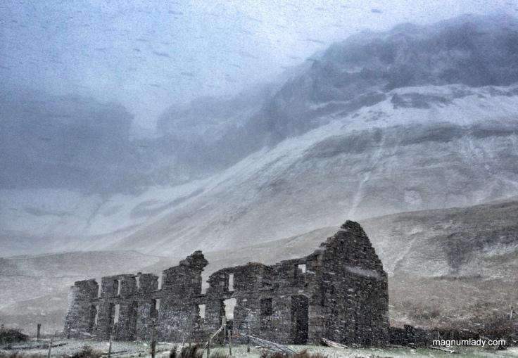 Snowy Sligo