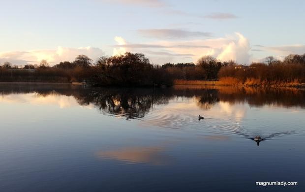 Clare Lake